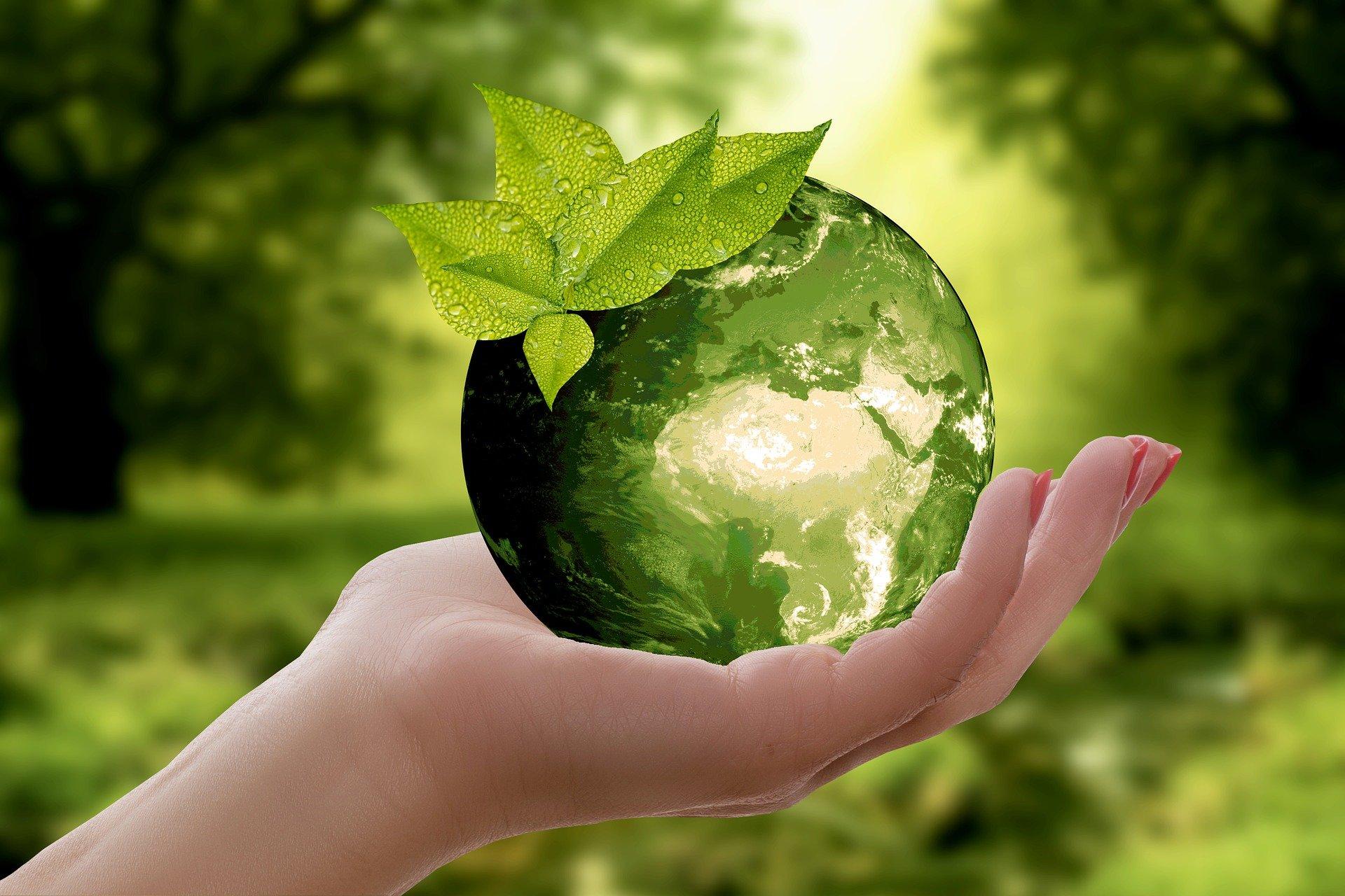 Zrównoważone zakupy CSR Sustainability in Procurement Corporate Social Responsibility